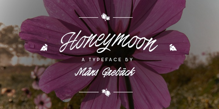 HoneymoonUprightBold-Rg