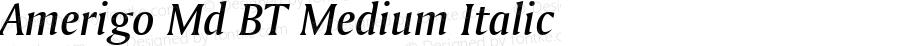 Amerigo Md BT Medium Italic mfgpctt-v4.4 Jan 4 1999