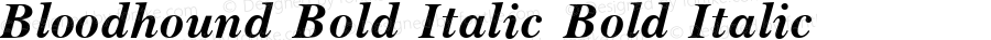 Bloodhound Bold Italic Bold Italic Unknown