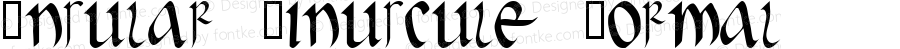 Insular Minuscule Normal Macromedia Fontographer 4.1 1/29/99