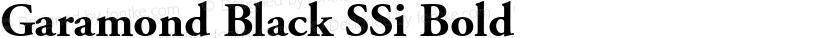 Garamond Black SSi Bold Preview Image