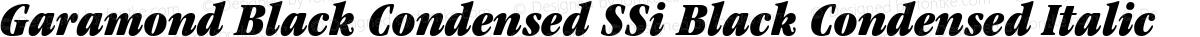 Garamond Black Condensed SSi Black Condensed Italic