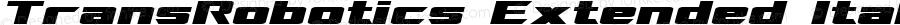 TransRobotics Extended Italic