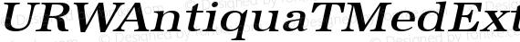URWAntiquaTMedExtWid Oblique preview image