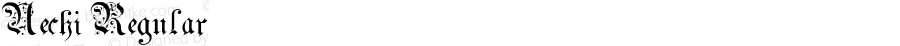 Uechi Regular Altsys Fontographer 3.5  4/17/92