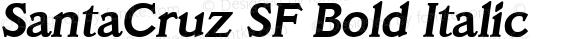 SantaCruz SF Bold Italic 001.003