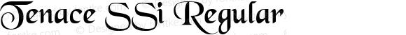 Tenace SSi Regular 001.001