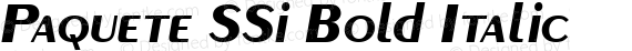 Paquete SSi Bold Italic preview image