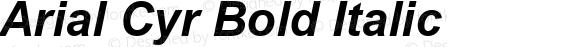 Arial Cyr Bold Italic Version 1.1 - November 1992