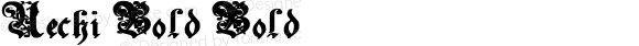 Uechi Bold Bold Unknown