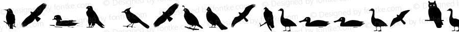 Bird Silhouettes Regular Altsys Fontographer 4.0.4 3/30/95