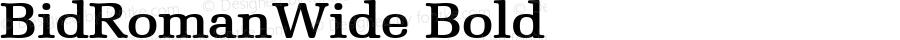 BidRomanWide Bold Altsys Fontographer 4.1 5/28/96