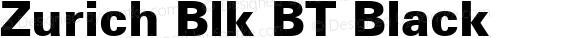 Zurich Blk BT Black preview image