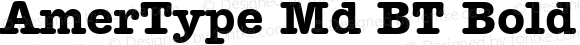 AmerType Md BT Bold mfgpctt-v1.53 Friday, January 29, 1993 12:02:54 pm (EST)