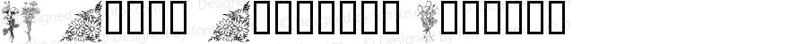 LM Phils Phlorals Regular Macromedia Fontographer 4.1 11/8/99