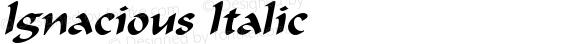 Ignacious Italic W.S.I. Int'l v1.1 for GSP: 6/20/95