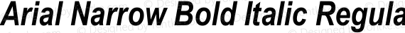 Arial Narrow Bold Italic Regular preview image
