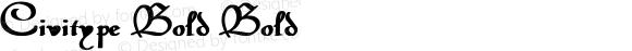Civitype Bold Bold Unknown