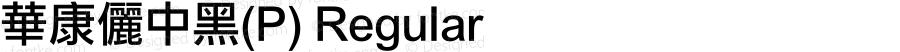 華康儷中黑(P) Regular 1 July., 2000: Unicode Version 2.00