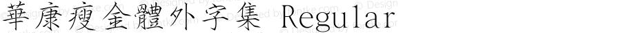 華康瘦金體外字集 Regular 1 Aug., 1999: Unicode Version 1.00