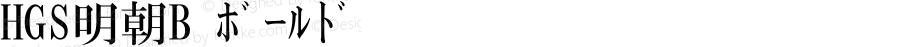 HGS明朝B ボールド Ver.2.02 (c255-mbhp10-mbz11-j0kei10-mbf13-mbs13-mbn10-mbe11-mbv1̀Ā