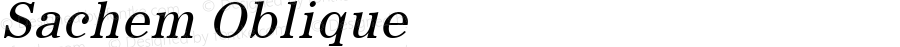 Sachem Oblique 1.0 Tue Sep 20 18:46:29 1994