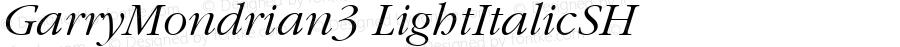GarryMondrian3 LightItalicSH