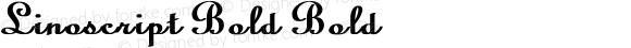 Linoscript Bold Bold Unknown