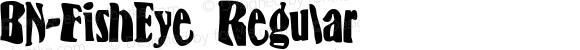 BN-FishEye Regular 1999; 1.0, initial release