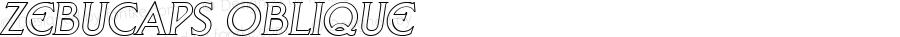 ZebuCaps Oblique 1.0 Thu Oct 13 11:05:13 1994