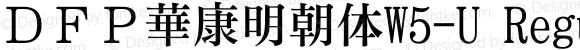 DFP華康明朝体W5-U