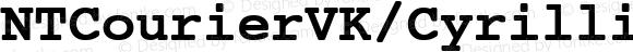 NTCourierVK/Cyrillic BoldOblique