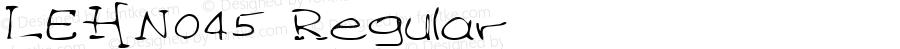 LEHN045 Regular Copyright (c)1996 Expert Software, Inc.