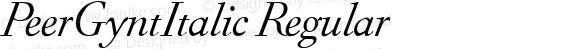 PeerGyntItalic Regular preview image