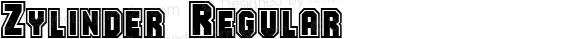 Zylinder Regular B & P Graphics Ltd.:18.07.1995