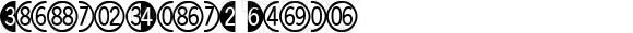 DigitsandPairsC Regular Rev 002.000