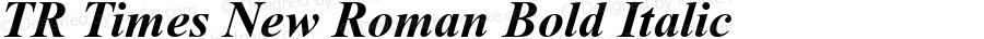 TR Times New Roman Bold Italic Version 2.50
