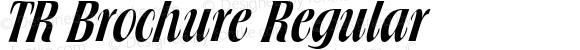 TR Brochure Regular 1.0 Sun Oct 31 23:56:26 1993