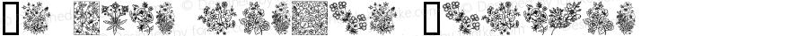 In your garden Regular Macromedia Fontographer 4.1 2002-01-18