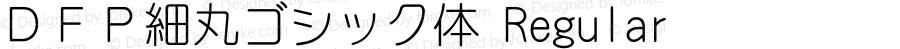 DFP細丸ゴシック体 Regular Version 2.00