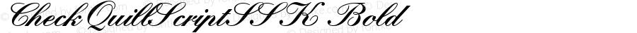 CheckQuillScriptSSK Bold Macromedia Fontographer 4.1 8/16/95