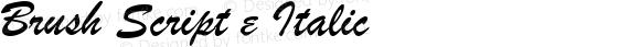 Brush Script e Italic preview image