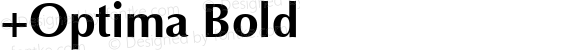 +Optima Bold 1.0 Wed Sep 01 19:44:05 1993