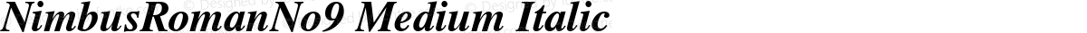 NimbusRomanNo9 Medium Italic