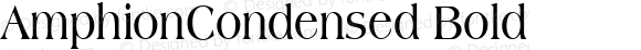 AmphionCondensed Bold also Copyright (c)1996 WIZ Technology, Inc., Licensed from the WSI-Fonts/Professional Collection