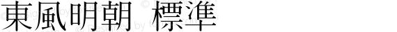 東風明朝 標準 preview image