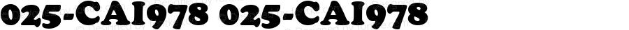 025-CAI978 025-CAI978 Version 1.00 January 1, 1904, initial release