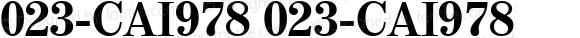 023-CAI978 023-CAI978 023-CAI978