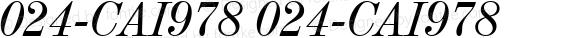 024-CAI978 024-CAI978 024-CAI978