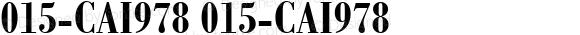 015-CAI978 015-CAI978 015-CAI978